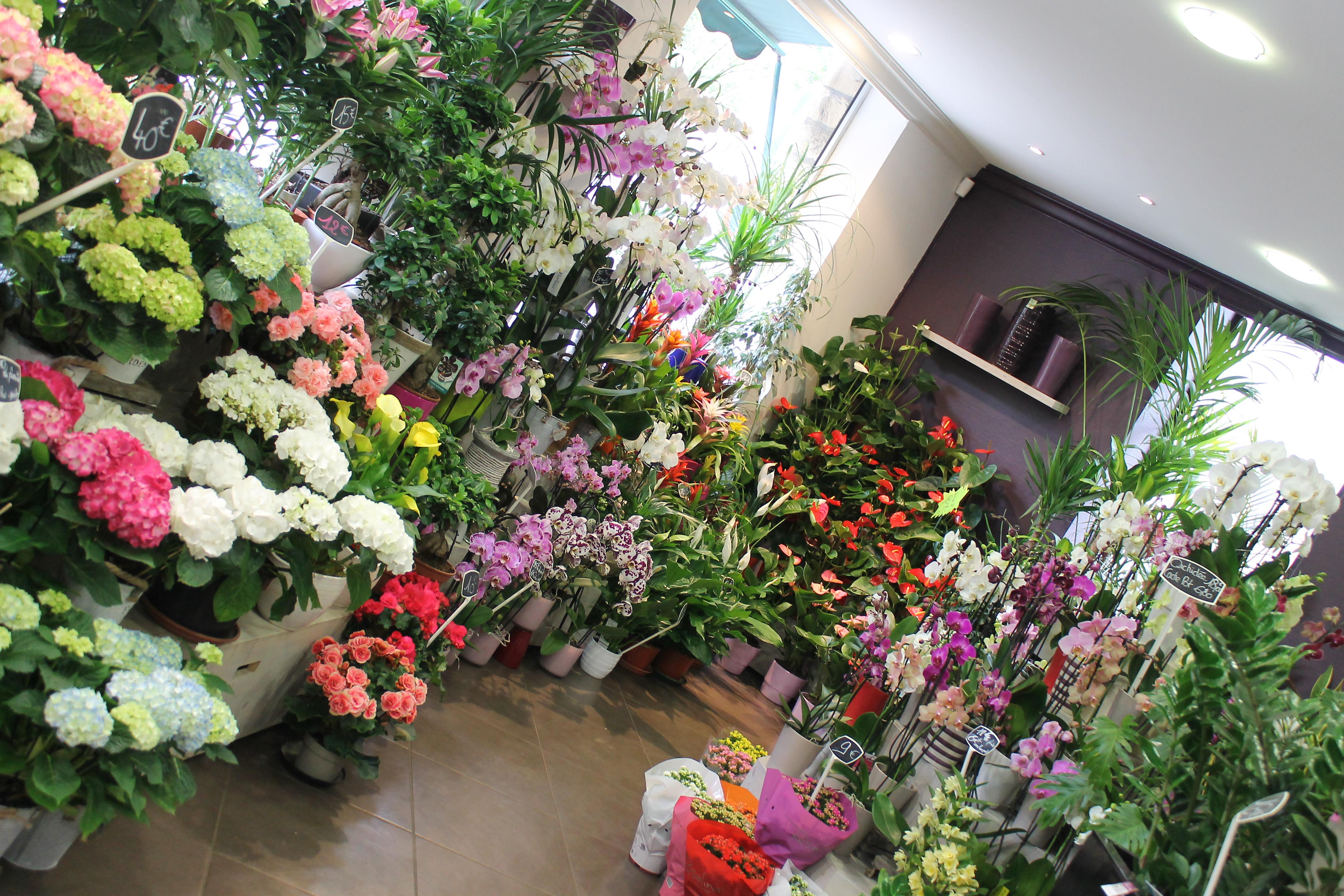 Fleurs 2000 - Photo n°5