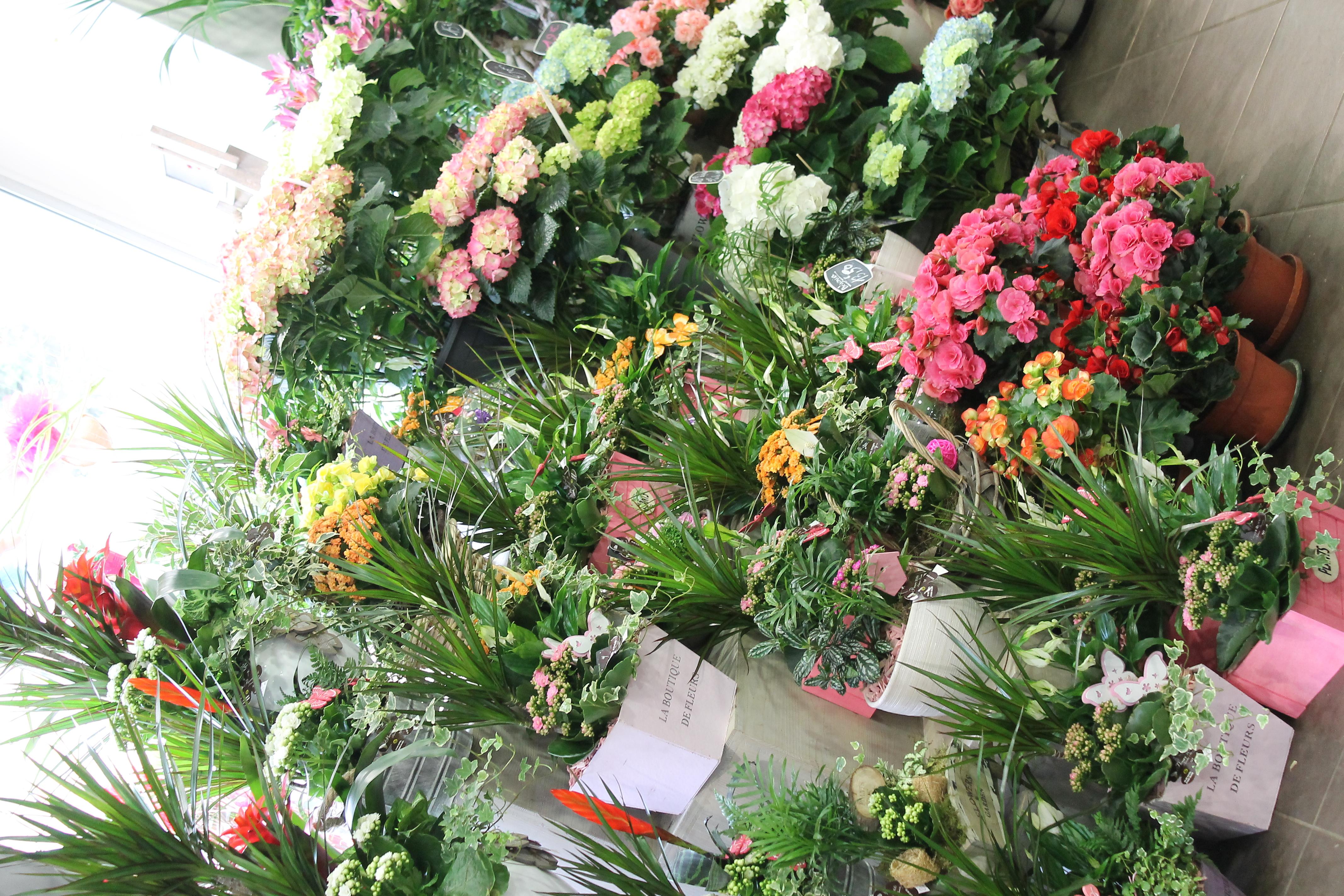 Fleurs 2000 - Photo n°4