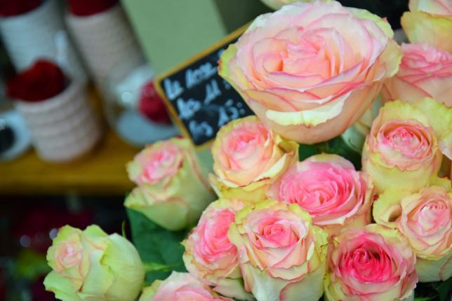 Au Nom de la Rose - Photo n°4