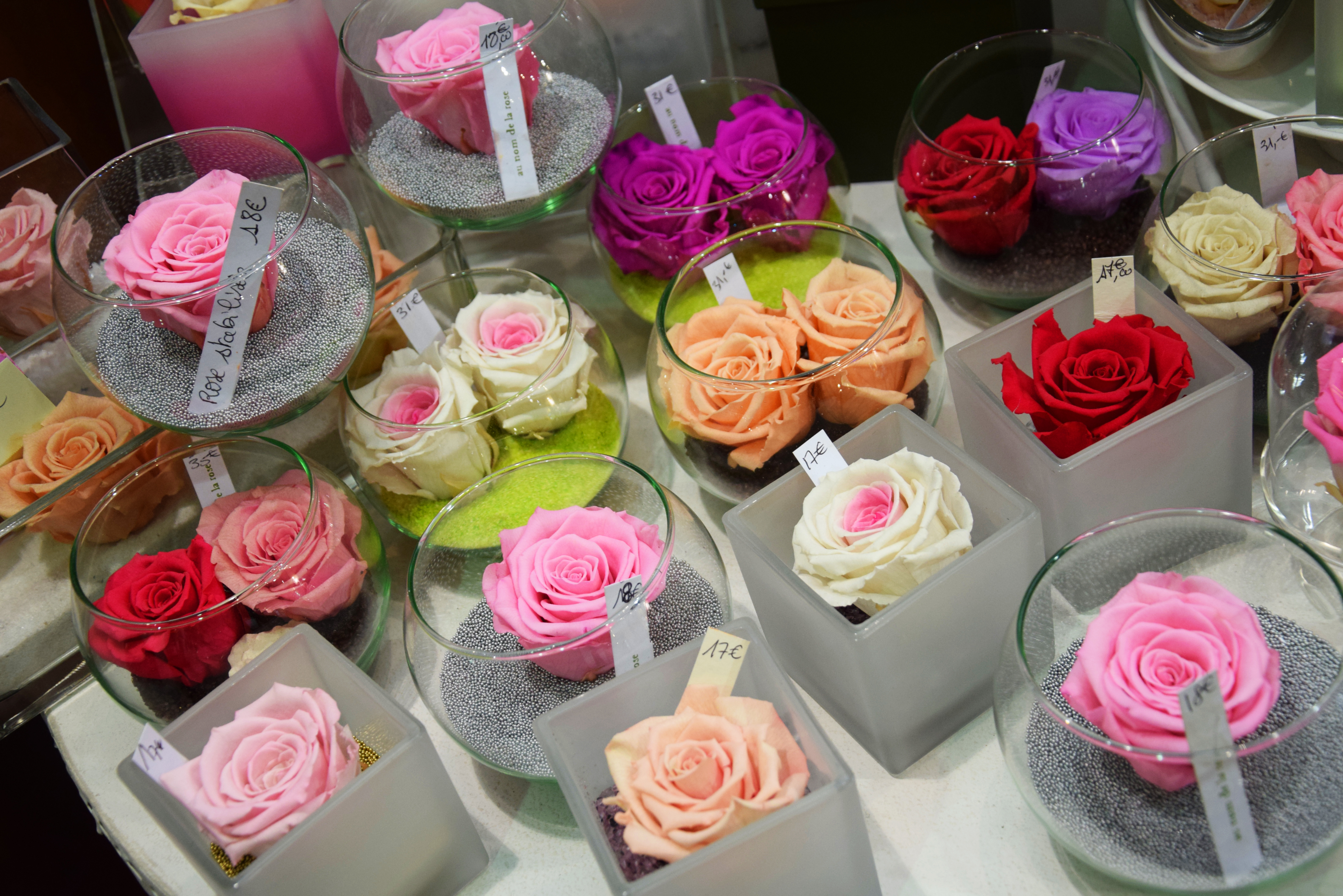 Au Nom de la Rose - Photo n°2
