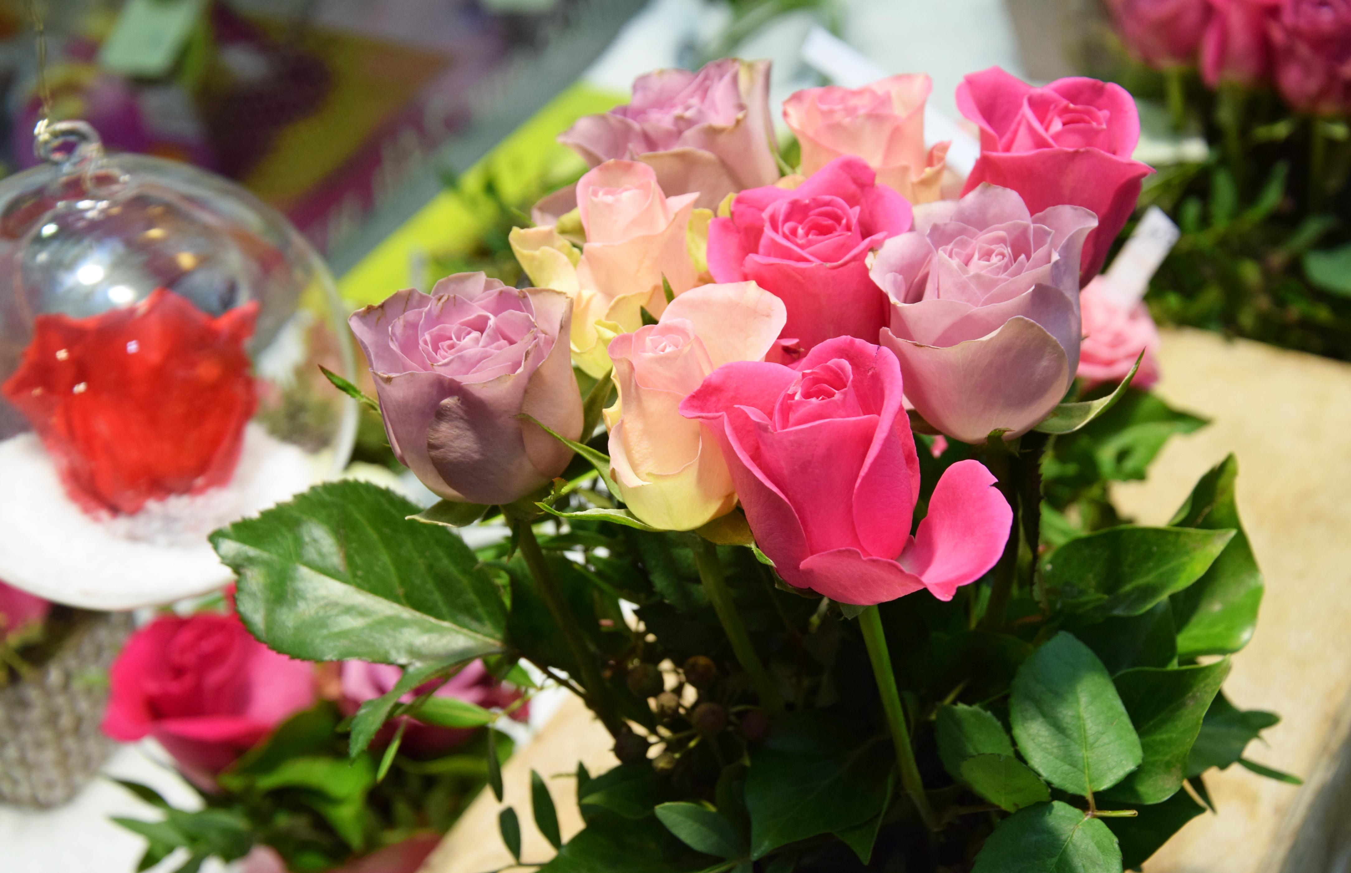 Au Nom de la Rose - Photo n°3