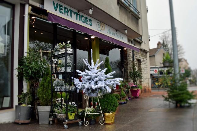 Vert' Tiges Fleurs Passion - Photo n°1