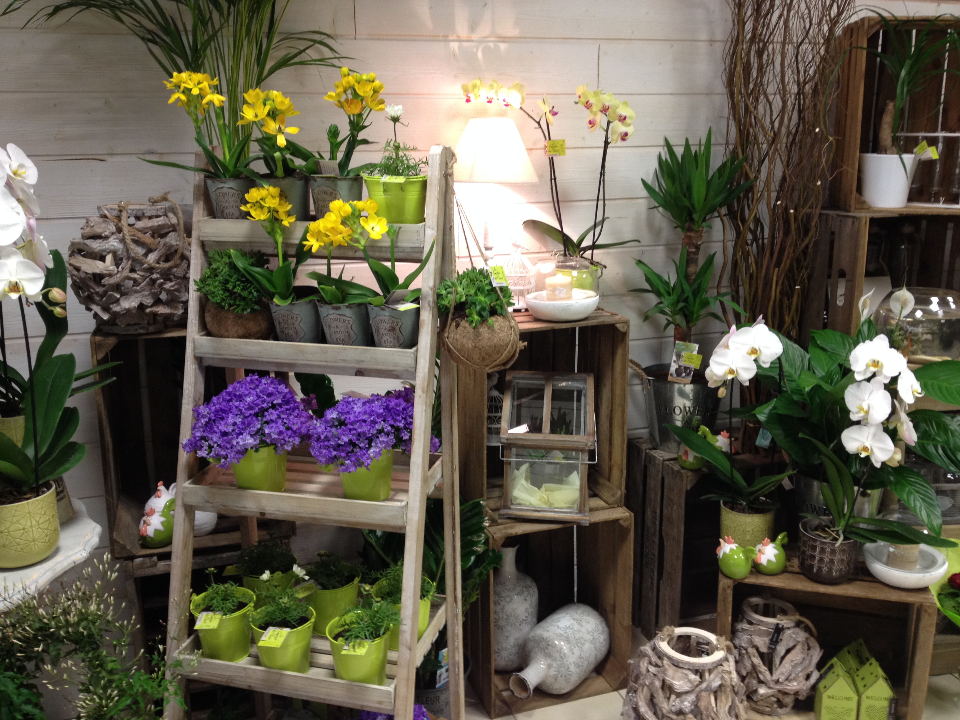 Le comptoir des fleurs fleuriste beaune byzelift for Livraison fleurs rennes